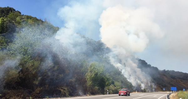Photo of Incendio en Peites (Ribas de Sil)