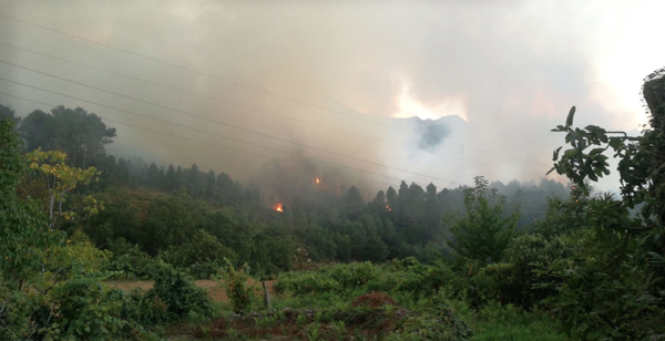 Photo of Incendio forestal en Lobios que afecta ao Parque Natural do Xurés