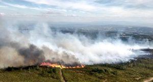 Incendio forestal en San Cristovo de Cea