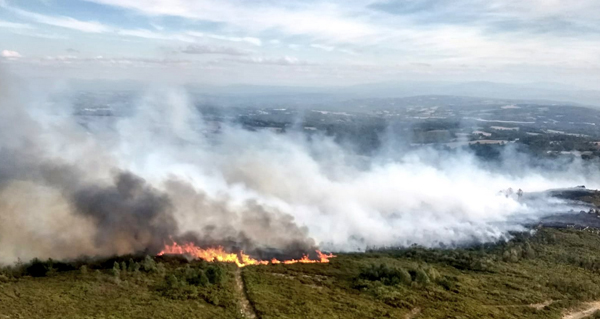 Photo of Incendio forestal en San Cristovo de Cea