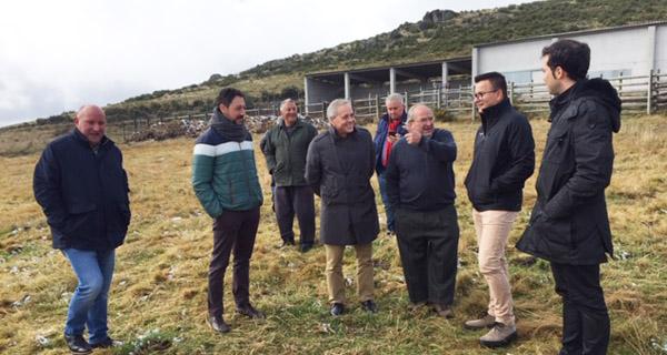 Photo of O conselleiro do Medio Rural visita a explotación de vacún en extensivo da CMVMC de Coba (Trives)