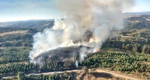 Incendio forestal con varios focos en Gudín