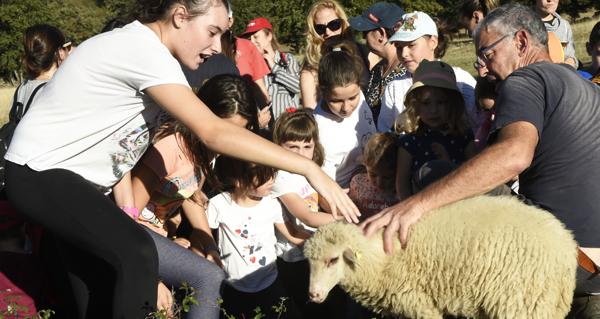 Photo of Comezan as visitas infantís á Granxa Escola A Capilla de Lentellais