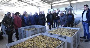 Coñecendo o proxecto da Cooperativa Amarelante de Manzaneda