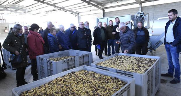 Photo of Coñecendo o proxecto da Cooperativa Amarelante de Manzaneda