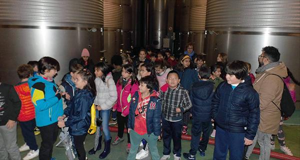 Photo of Alumnos do CEIP Condesa de Fenosa descubren o proceso de elaboración do viño