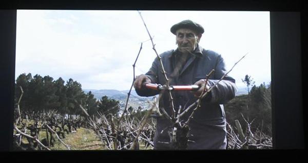 "Photo of O filme valdeorrés ""Os Fillos da Vide"", no ciclo ""Miradas etnográficas"" do Museo Etnolóxico de Ribadavia"