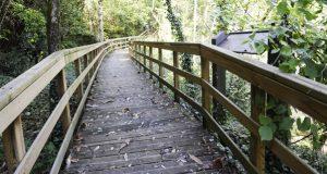 Parada de Sil achega un amplo programa de actividades para descubrir as súas paisaxes de outono