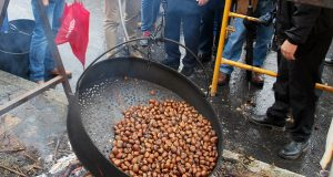 XXIV Festa da Castaña e do Cogomelo en Riós
