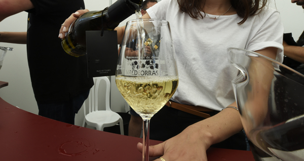 Photo of Os viños de 21 adegas valdeorresas promocionaranse en Madrid