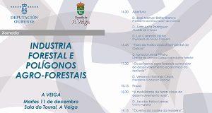 O futuro da industria forestal galega será analizado nunhas xornadas na Veiga