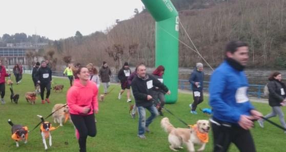 Photo of Os propietarios de mascotas de Ourense teñen unha cita este domingo no III Canicross