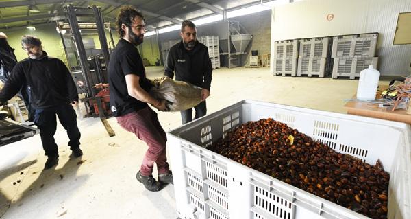 Photo of O proxecto da Cooperativa Amarelante de Manzaneda pecha as Xornadas sobre Oportunidades do Medio Rural no Barco