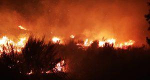 O incendio de Castromil (A Mezquita) leva queimadas máis de 60 hectáreas