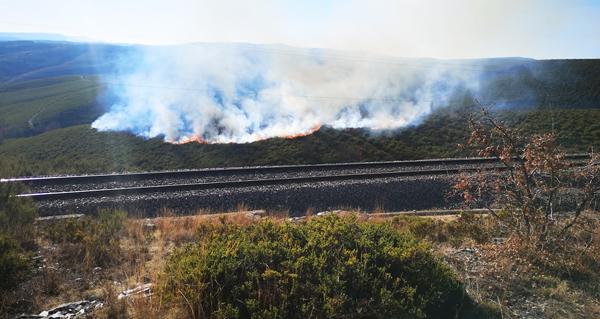 Photo of Incendio forestal con varios focos simultáneos en Castromil (A Mezquita)