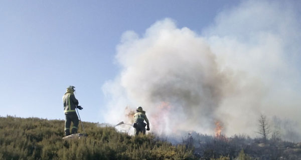 Photo of Incendio forestal en Castromil (A Mezquita)