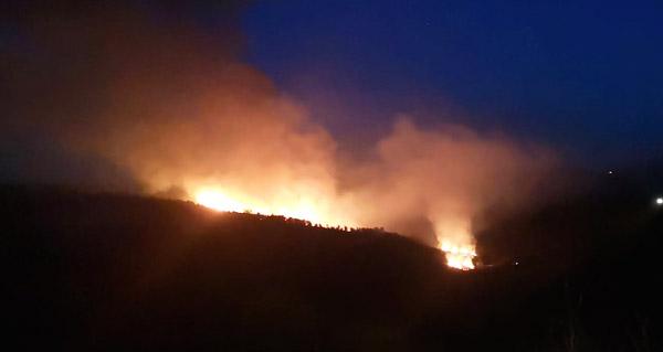 Photo of Incendio forestal en Pentes (A Gudiña)