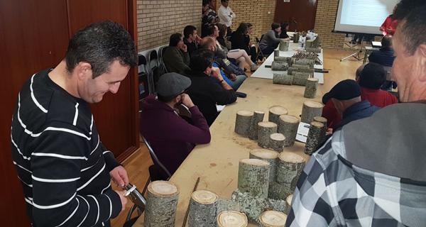 Photo of Unha sesión práctica completa a xornada de inxerta e poda do castiñeiro en Manzaneda