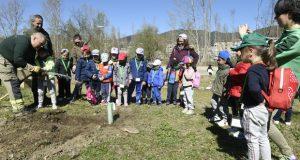 O Barco celebra o Día da Árbore cunha plantación no Salgueiral