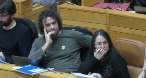 Davide Rodríguez pregunta no Parlamento galego sobre a xestión da praga da velutina