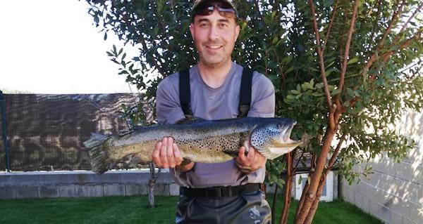 Photo of Unha troita de 3,3 quilos, pescada no río Sil en Quereño (Rubiá)