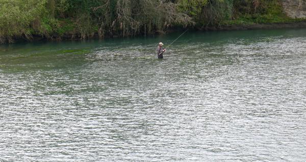 Photo of Ábrese a tempada de pesca fluvial