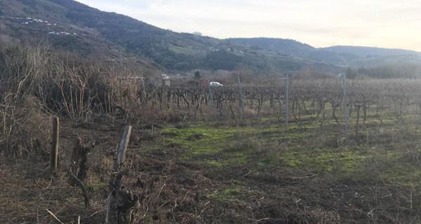 Photo of Falece o octoxenario da Rúa que sufría queimaduras hai un mes nunha queima agrícola