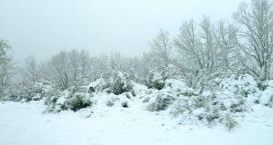 A neve pinta de branco a primavera na montaña ourensá