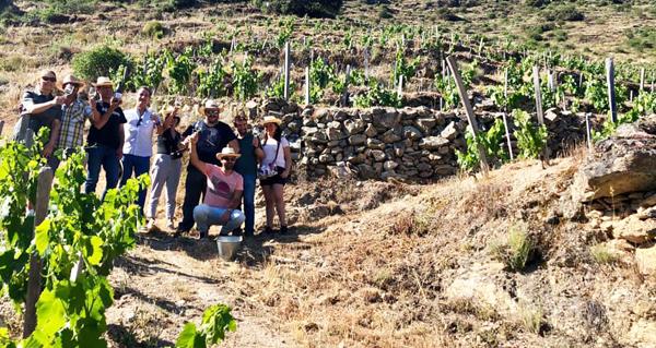 """Photo of Anna Vicens, sumiller catalá: """"En Valdeorras vexo moito futuro para os viños"""""""