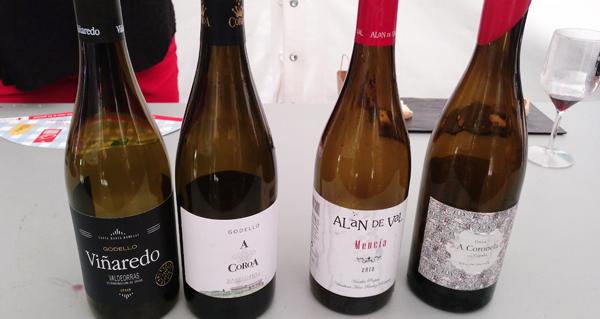 Photo of Harmonías de viños valdeorreses e produtos gourmet, no SilFest Valdeorras
