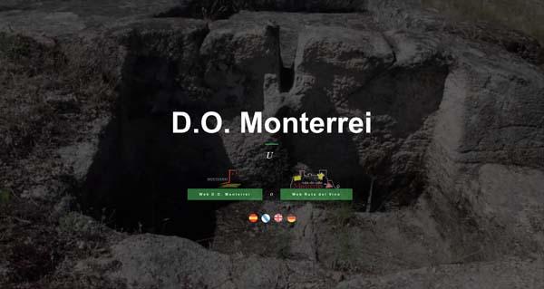 Photo of A D.O. Monterrei estrea nova páxina web