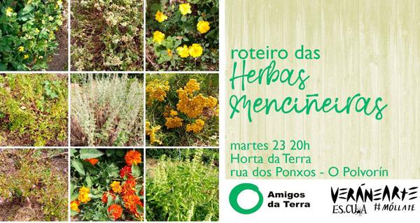 Photo of Barbadás acollerá o Roteiro das Herbas Menciñeiras dentro do programa VeránEarte