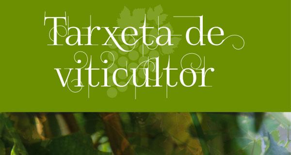 Photo of Os viticultores da D.O. Ribeiro terán novas tarxetas
