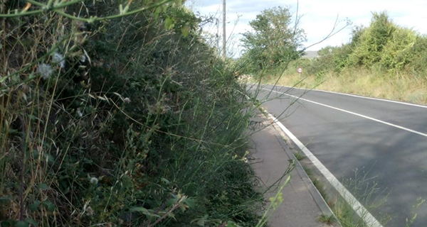 """Photo of A AA.VV. San Lourenzo de Arcos denuncia """"o abandono dun tramo de beirarrúa da N-120 ao seu paso por A Proba"""""""