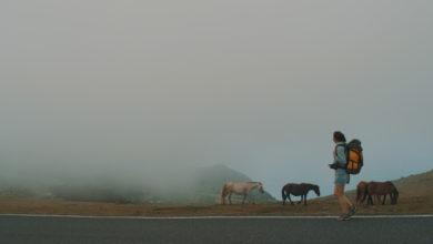 """Photo of A longametraxe ourensá """"Pelerinaxes"""" abrirá o III Ciclo de Cine Galego en Bos Aires"""