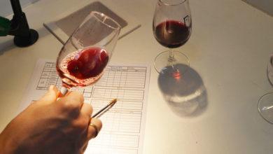 Photo of Curso de iniciación á cata sensorial de viños en Verín