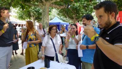 Photo of Doce viños valdeorreses na cata do XI Mercaberto, no Barco