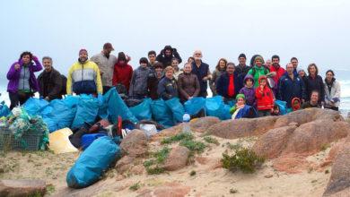 Photo of O C.R.D.O. Ribeiro colabora na retirada de plásticos nas praias galegas