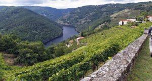 A Ribeira Sacra lanza a súa candidatura para converterse na sétima reserva da biosfera de Galicia