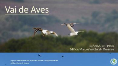 "Photo of A SGHN imparte a conferencia ""Vai de Aves"" en Ourense"