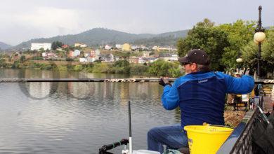 Photo of Ignacio Luis Álvarez (SPF Valdeorras) formará parte do equipo que representará a Galicia no nacional de auga doce 2020