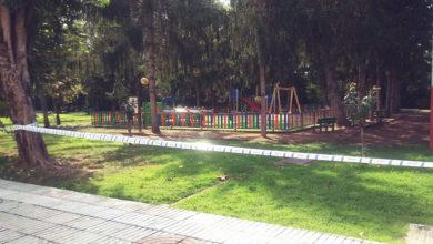 Photo of Aparecen tres niños de vespa velutina nun parque de Monforte