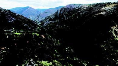 Photo of Medio Ambiente formalizará este ano a candidatura da Ribeira Sacra a reserva da biosfera