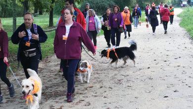 """Photo of Andaina canina """"por unha convivencia responsable"""" polo paseo do Miño, en Ourense"""
