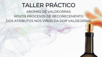 Photo of Taller sobre procesos de recoñecemento dos atributos nos viños da D.O. Valdeorras en novembro