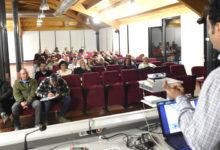 Photo of Unha boa planificación, clave á hora apostar pola produción de castaña galega