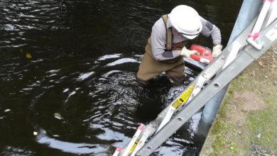 Photo of A CHMS crea un novo punto de control de calidade das augas no Arenteiro ao seu paso polo Carballiño