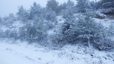 Photo of Un manto branco cobre a paisaxe de Cabeza de Manzaneda