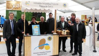 Photo of A 1ª Feira do Agro da Limia, ALIMAGRO 2019, abre as portas na praza Carlos Casares