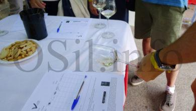 Photo of Un curso-cata permitirá descubrir os viños singulares de Valdeorras